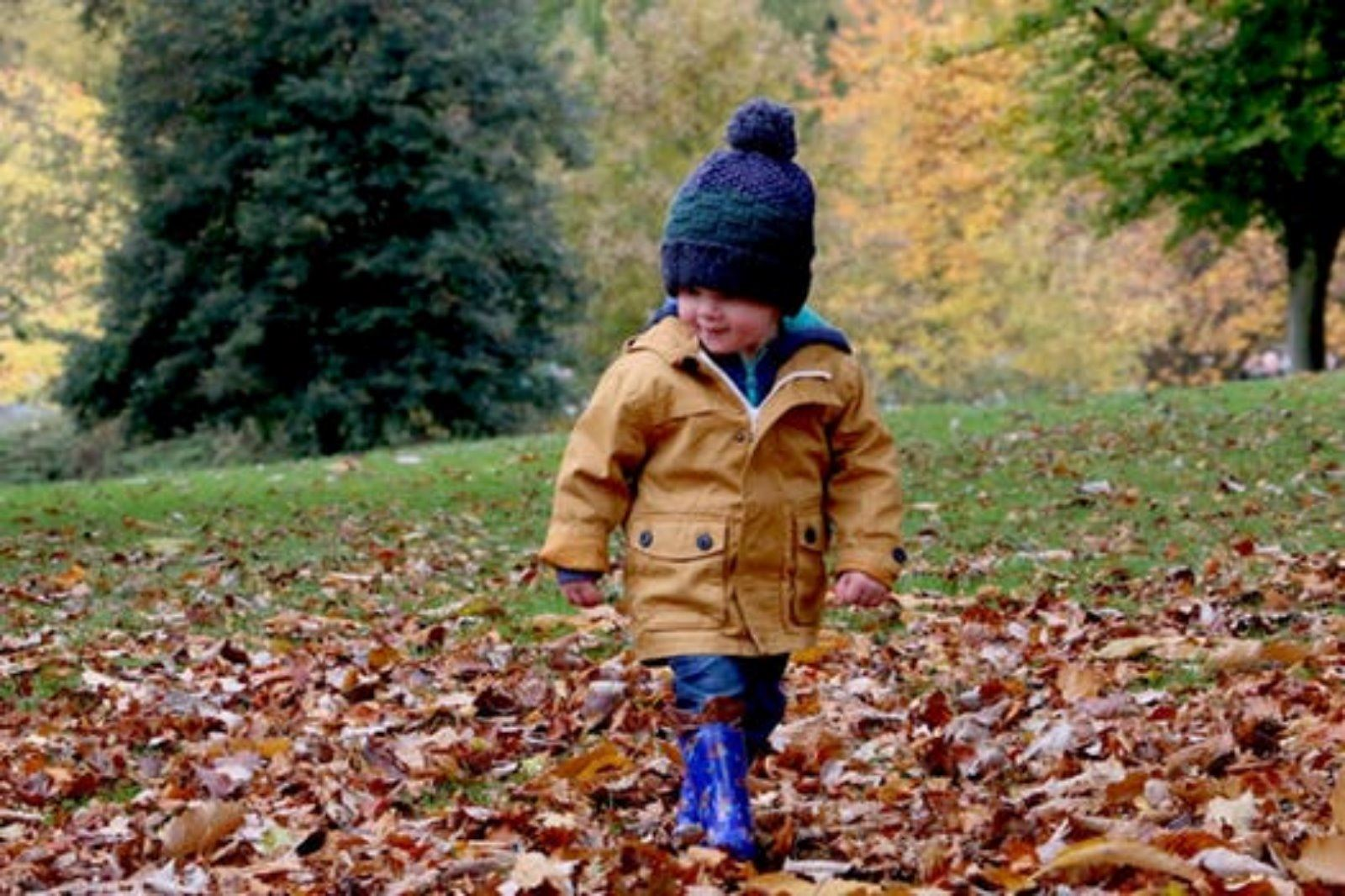 fall, young boy in hat